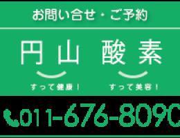 maruyama-tel2-01