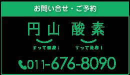 maruyama-tel2-02